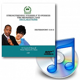 Strengthening Yourself to Possess the Promised Land - Downloadable MP3